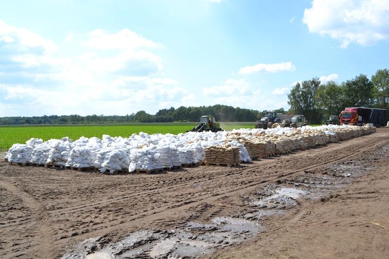 Tausende Sandsäcke sind bereit zum Abtransport.